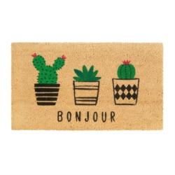 Paillasson COCO/PVC Bonjour cactus
